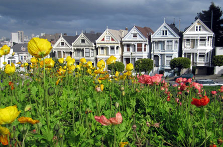 usa_homepage256_tag6paintedladies4
