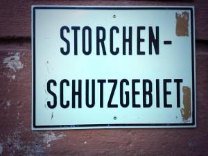 Herrlich: Der Presseparkplatz liegt im Storchenschutzgebiet. (Foto: twitter.com/AndiErnst)